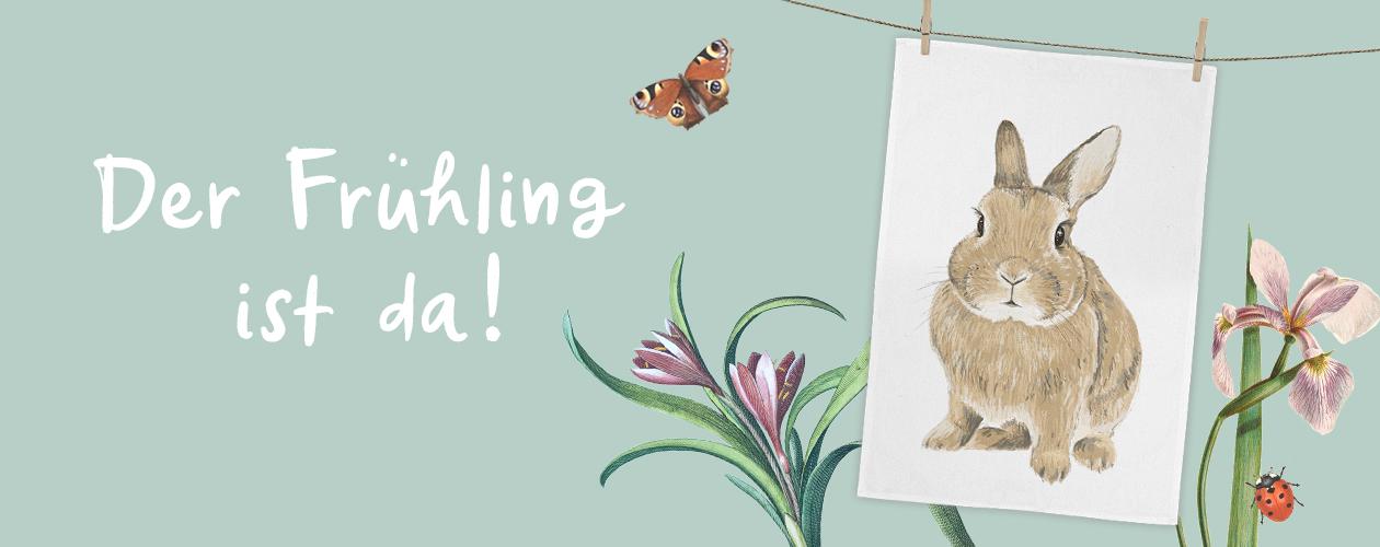 Startseite Banner Frühling Hase